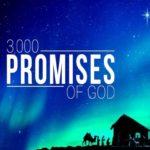 Promises 450